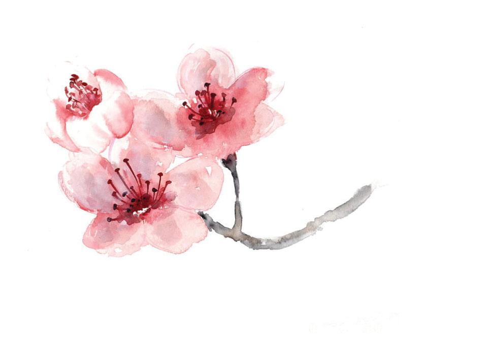 cherryblossomartprintwatercolorpaintingjoanna